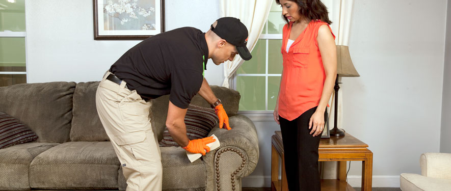 Winchester, VA carpet upholstery cleaning